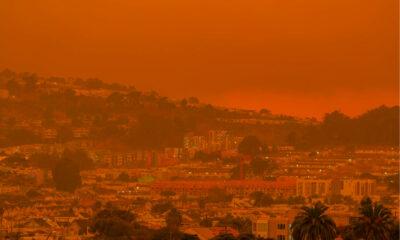 Dans la Californie en flammes, les Français au bord du burn out